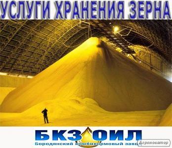 Хранение зерна на складе. Услуги по хранению зерна. Элеватор. Ангар
