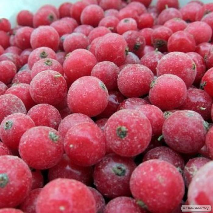 Смородина красная (смородина) замороженная