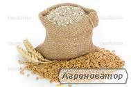 Реализуем отруби пшеничные, муку,жмых, шрот