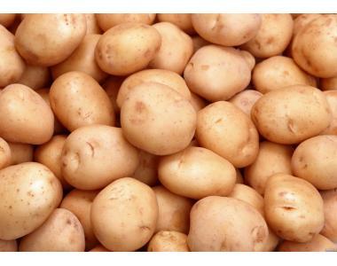 Продам картоплю Беллароса до 6т