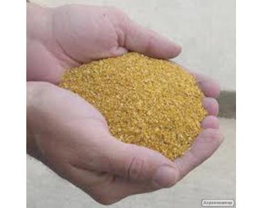 Барда післяспиртову кукурудзяна, суха, від виробника.