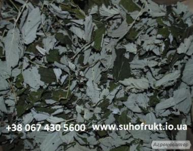 Сушеный лист смородина, малина, ежевика, вишня