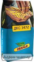 Продам Монсанто ДКС 3472 ( Кукурудза ) 2016 рік