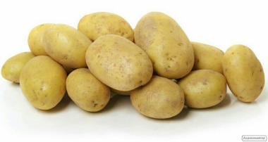 Продажа ривьеры посадка Продам картофель посадочный ривьера.