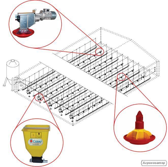 Лінії годівлі для підлогового бройлера (індики, качки) фірми CODAF