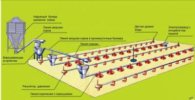 Оборудование для напольного выращивания бройлеров ОПБ-1