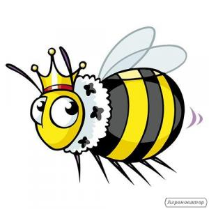 Продажа пчёлопакетов 2019г