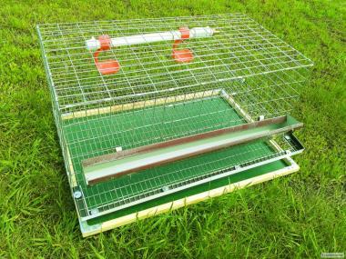 Клітки для перепелів на 30 голів. Обладнання для розведення (+ВІДЕО)