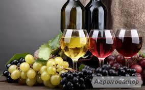 Продам Вино!