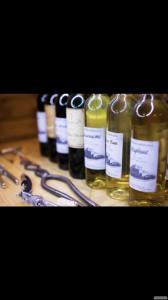 Натуральное Закарпатское вино с собственных виноградников!