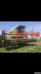 Прибирання врожаю зернових