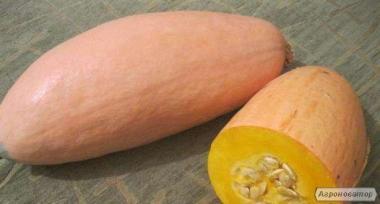 Продам насіння гарбуза Пінк Джамбо Банана