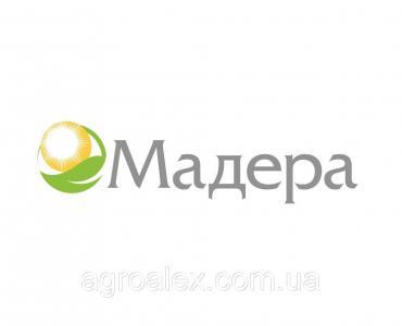 Мадера 48РК* аналог Евролайтинг від Terra Vita
