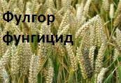 Фунгицид Фулгор 250