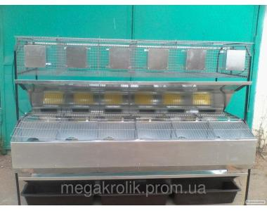 КМОП-2( Клітка маткова, відгодівельна, пристінна, модифікована)