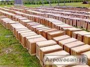 Продаю бджолопакети Карпатка з доставкою в Київ,Полтаву,Харків,Ізюм.