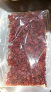 Продаємо Червоний Барбарис дрібним і великим оптом від 10 кг