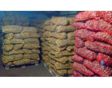 Продам бойный грецкий орех 2015г, кругляк, в сетках, сухой Харьков
