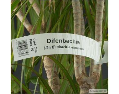 Этикетка для растений петля 25х215мм (1600 штук)