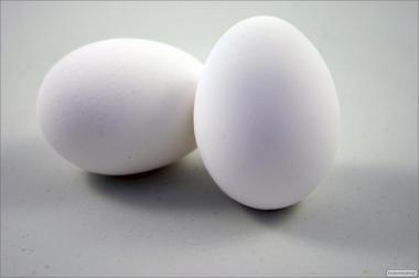 Продам яйце інкубаційне Loman Wite від маточного поголів'я з Німеччини