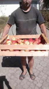 Ящик для яблока