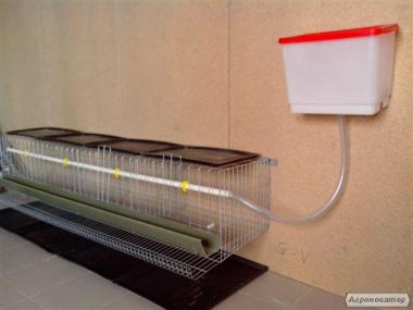 Клетки для содержания бройлеров, несушек и перепелов