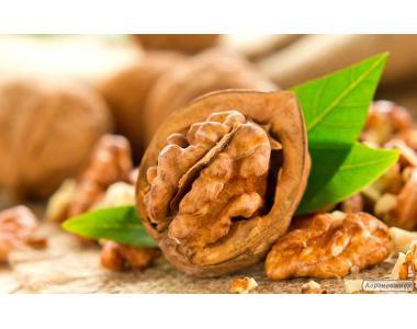 Продам ядро грецкого ореха, 100% бабочка. Недорого!