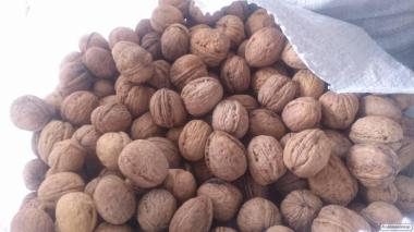 Продаю митий волоський горіх, урожай 2018 р. Експортний варіант