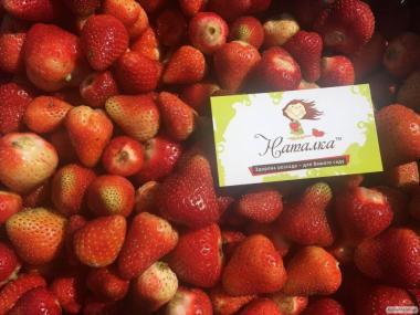 Продам полуницю оптом - свіжі ягоди. Власні поля (виробник)
