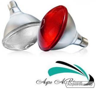 Інфрачервоні лампи 175 Вт