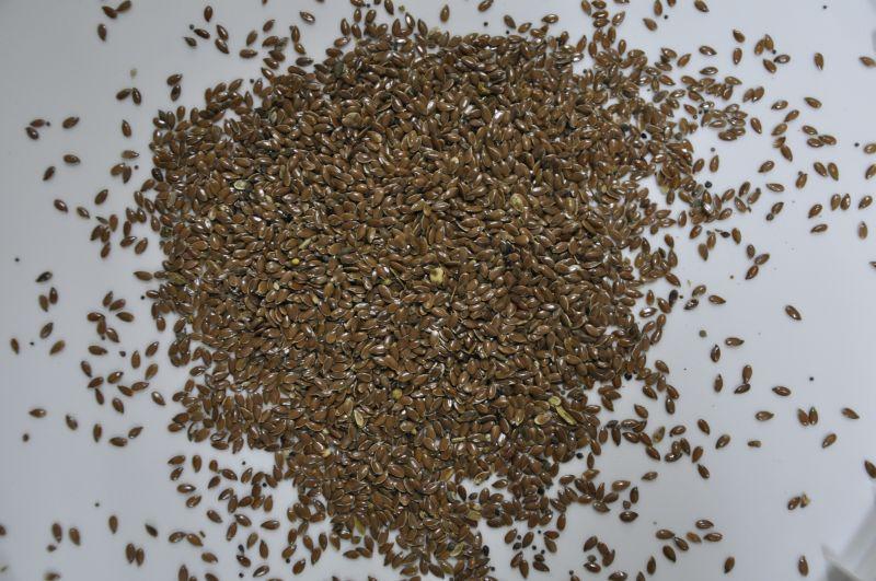 Зерновые корма