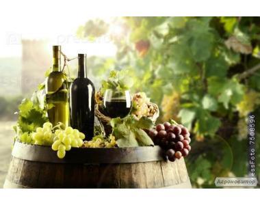 Натуральное домашнее вино