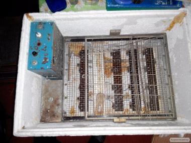 """инкубатор инкубатор """"наседка"""" из ссср 80-90років автопереворот, режим"""
