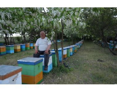 Продам бджолопакети !