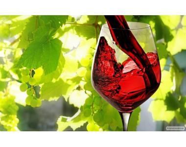 Продам домашнє вино