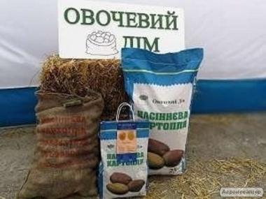 Купить семенной картофель. Семенной посадочный картофель элита.