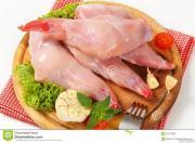 продам мясо кролика породы калифорния