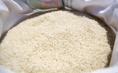 Продам якісний рис