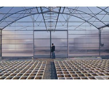 Полікарбонат стільниковий, прозорий, тепличний від 4 до 16 мм.