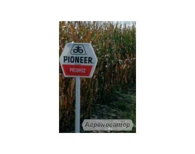 Насіння кукурудзи ПР39Г32 / PR39H32 ФАО 200