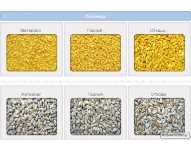 Фотосепаратор: сортировка и очистка зерновых, бобовых, масличных.