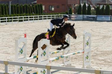 Пропонується спортивна кобила El Doble De La Passion.