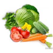 Семена Овощей Украина