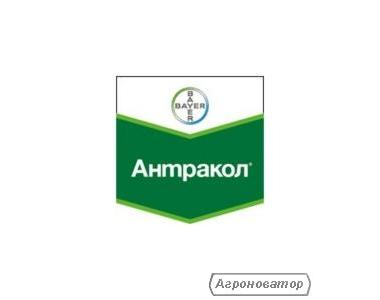 Фунгицид Антракол 70 WP (Bayer Crop Science)
