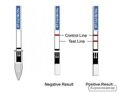 Тест смужки для визначення ГМО білка СР4 Artron (Канада)