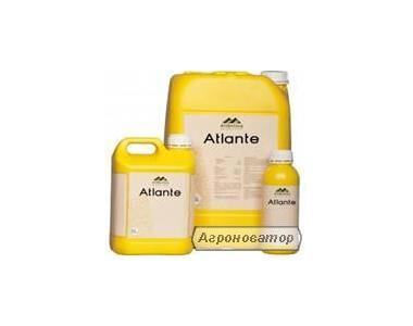 АТЛАНТЕ - фосфорно-калийное удобрение