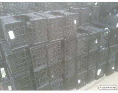 Пластмассовые ящики (цитрусовые)