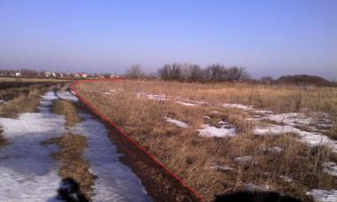 Земля ОСГ 57 га Артемовка, Иванков, Бориспольский район