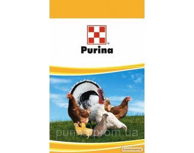 Комбикорм для птицы ТМ Purina