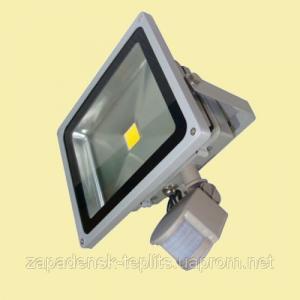 Світлодіодний прожектор LED 10Вт 6200К 920Лм, IP66 з датчиком руху
